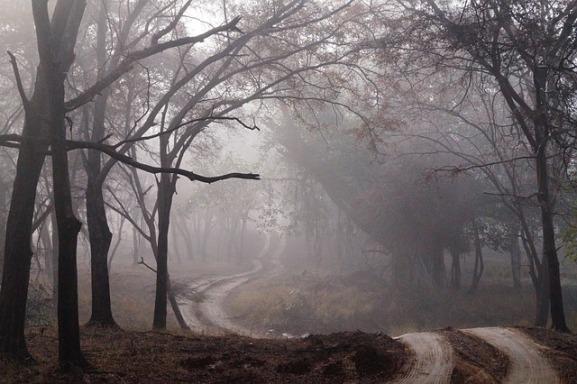 dirt-road-427913_640